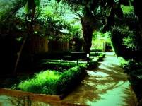 Foto 08-05-2011 16 15 49